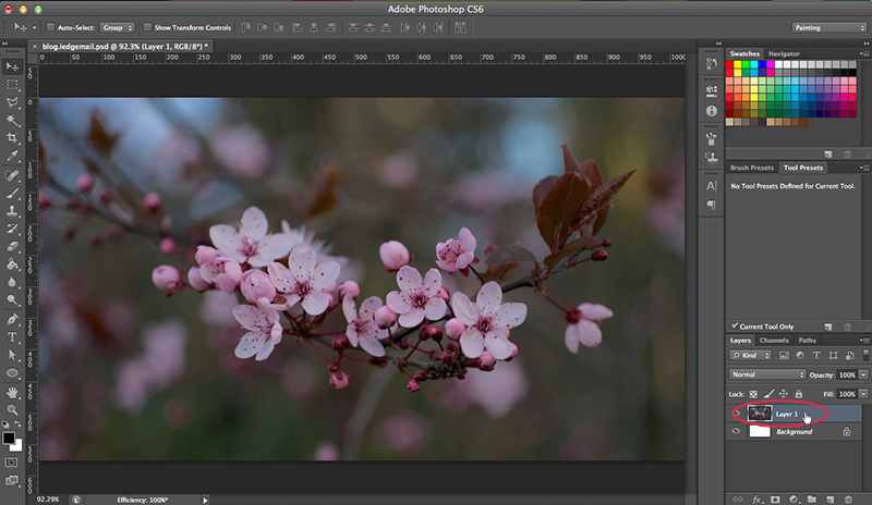 How to Use Burn and Dodge Tool in Photoshop - Duplicate Layer