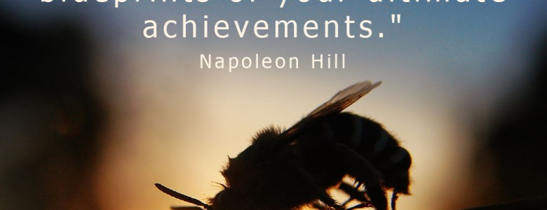 """""""Cherish your visions and your dreams as they are the children of your soul, the blueprints of your ultimate achievements."""" - Napoleon Hill"""