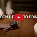 Don't Drive to Drink