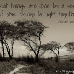 A Series of Small Things