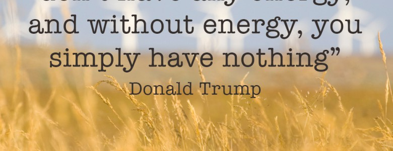 """Without passion, you don't have any energy, and without energy, you simply have nothing"" - Donald Trump"